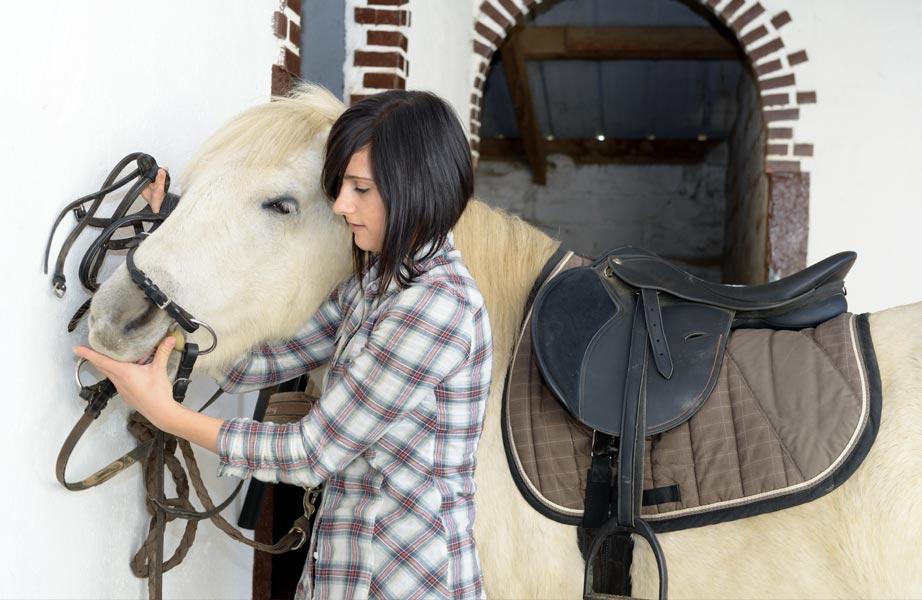 Pferdegrundausstattung